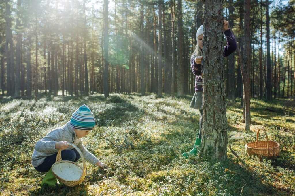 Kids in nature by Aron Urb
