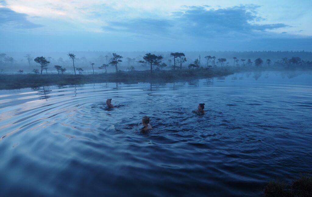 Bog Swimming by Kristjan Lust